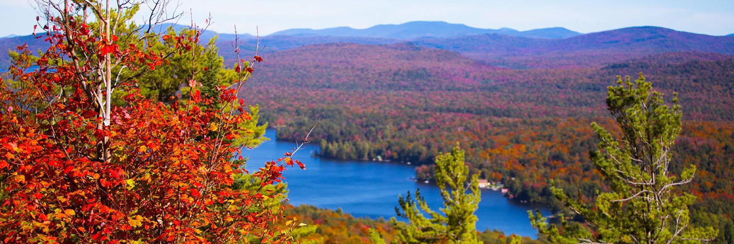 Leaf Peeper Package