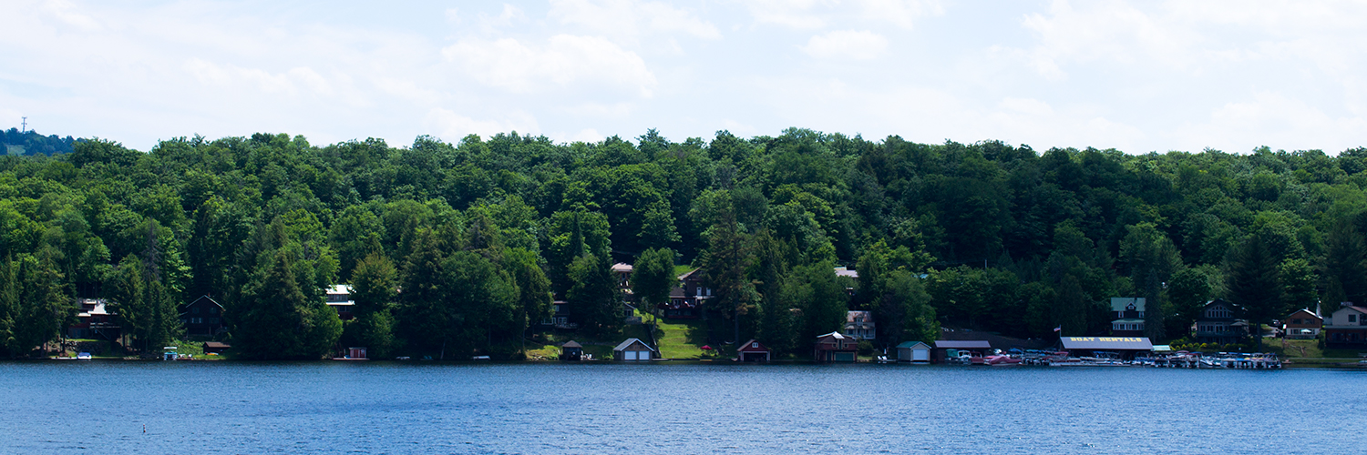 View of the lake with summer trees and houses beyond