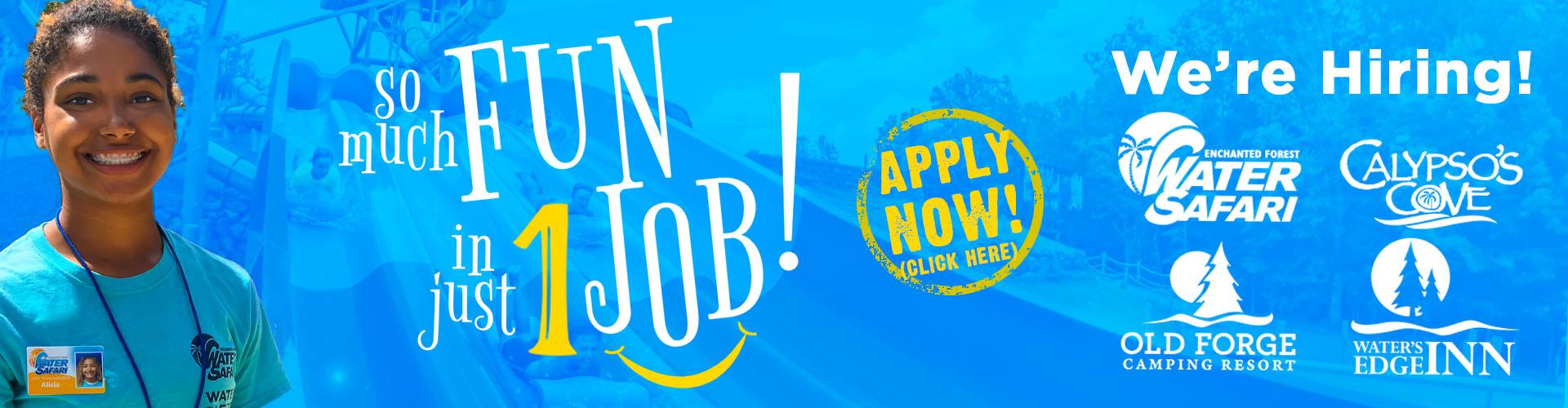 Water Safari Resort Hiring Summer 2021 - Apply Now!
