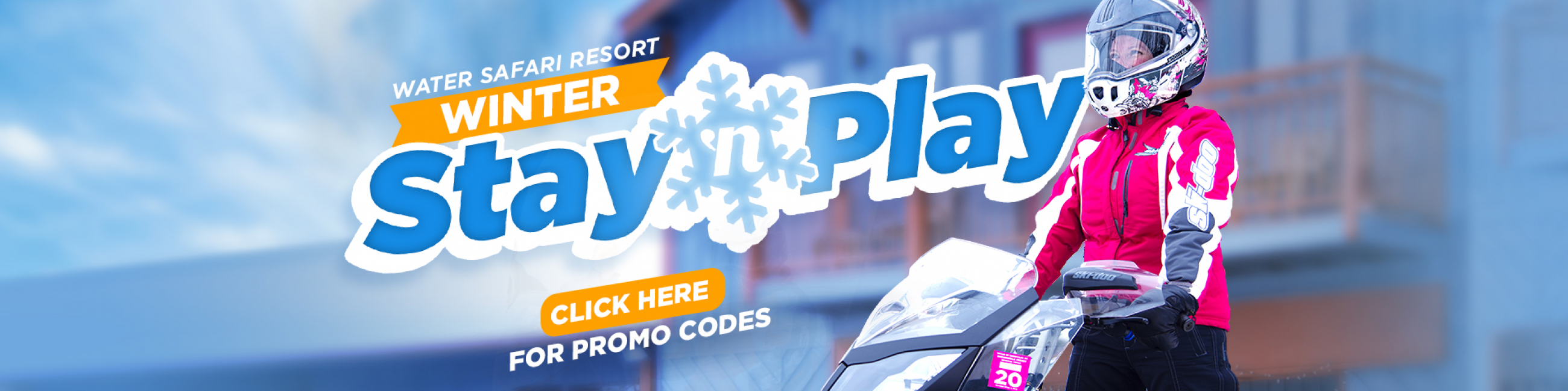 Winter Stay 'N Play Specials